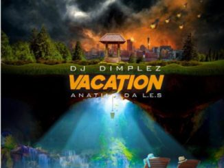DJ DIMPLEZ FT ANATII & DA LES – VACATION (SNIPPET)