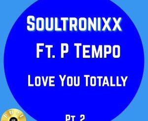 SOULTRONIXX – LOVING YOU TOTALLY (URBAN MUSIQUE REMIX)