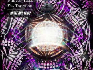 Master Fale - What Are You Ft. Tsoness
