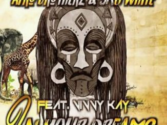 Afro Brotherz & SkyWhite - In Your Dreams Ft. Vinny Kay
