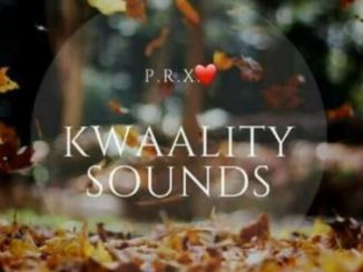 Kwaality Sounds – Road 2Gqom Invasion