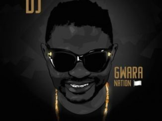 Album: DJ Bongz Gwara Nation (Zip File)