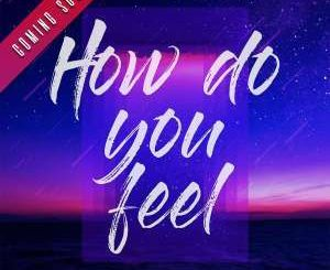 DJ Mshega - How Do You Feel Ft. Ziyon