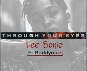 Lee Sonic – Through Your Eyes (Remixes Part1) Ft. Buddynice