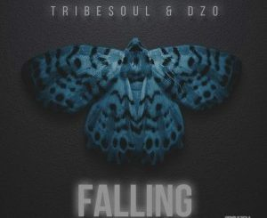 Tribesoul & Dzo - Falling (Original Mix)