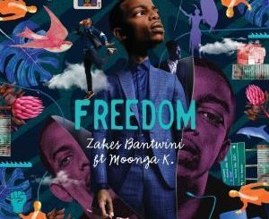 Zakes Bantwini - Freedom Ft. Moonga K