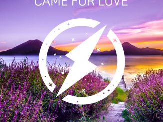 Wild Heart – Came For Love