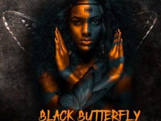Tedical – Black Butterfly