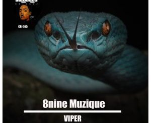 8nine Muzique – Viper