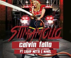 Calvin Fallo - Stimamollo Ft. Liquid Metsi & Manel