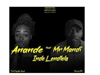 Anande - Inde Lendlela Ft. Mr Mandi