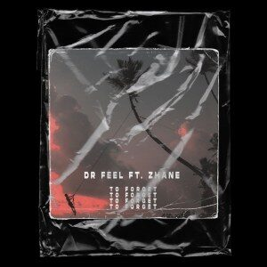 Dr Feel – To Forget feat. Zhane