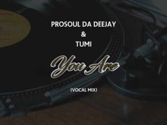 ProSoul Da Deejay - You Are (Vocal Mix) Ft. Tumi