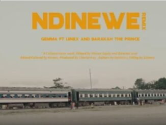 VIDEO: Gemma – Ndinewe (Remix) Ft. Linex and Barakah The Prince