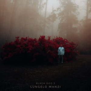 Closure – Lungelo Manzi