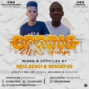 Nkulee 501 – Spring Selection Mix Ft. Skroef28 (Strictly Mdu aka TRP & Bongza)