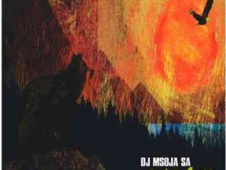Dj Msoja SA – Animal