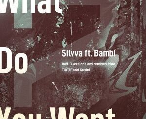 EP: Silvva – What Do You Want Ft. Bambi