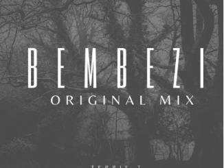 Terrie T – Bembezi (Original Mix)